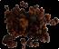 Truffles Mexicana